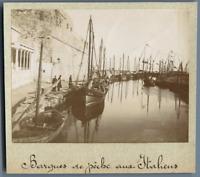 Tunisie, La Goulette (حلق الوادي), Barques de pêche aux Italiens  Vintage citrat