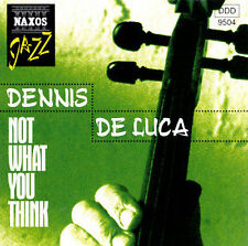 NOT WHAT YOU THINK - DENNIS DE LUCA - 13 TRACK JAZZ MUSIC CD - LIKE NEW - E760