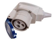 CEE Winkelkupplung Kupplung Stecker 230V,16A blau 3polig as Schwabe 60475