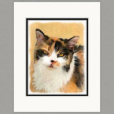 Calico Cat Original Art Print 8x10 Matted to 11x14