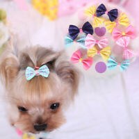 5pcs Set Cute Pet Puppy Dog Cat Hairpin Hair Bows Dog Hair Clips Dog Grooming,