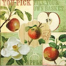 4x Paper Napkins -Apple Garden- for Party, Decoupage Craft
