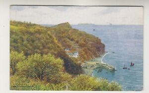 Devon postcard - Clovelly from the Hobby Drive - ARQ 2367 - P/U 1936 (A2717)