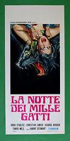 L45 Plakat Die Nacht Der Tausend Katzen Stiglitz Linder Stewart