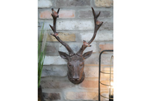 Stag Head With Robin Bird Brown Wall Mounted Antlers
