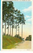ROGERS CITY,MICHIGAN-GOVERNMENT RESERVED PINES ON US 23-W/B--(MICH-RMISC)