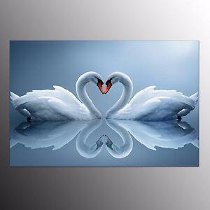 FRAMED Giclee Canvas Prints Art For Living Room Swan Lover Wall Art Painting