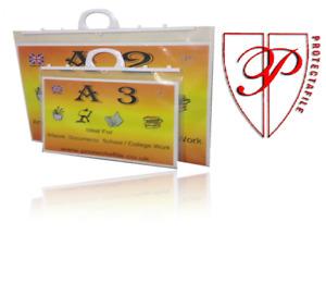 A4+ A3 A2,A1 Strong Clear Handle Carry File Case Folder Folio Portfolio Artwork