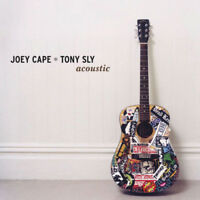 "Joey Cape and Tony Sly : Acoustic Vinyl 12"" Album (2004) ***NEW*** Amazing Value"