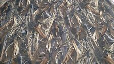 "120"" IN DRT DUCK BLIND TRUE TIMBER CAMO AUTO HEADLINER FABRIC 3/16"" FOAM BACKING"