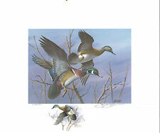 NORTH CAROLINA  #2 1984 STATE DUCK STAMP PRINT  WOOD DUCKS  Jim Killen Remarque