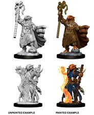Female Dragonborn Sorcerer: D&D Nolzur's Marvelous Miniatures