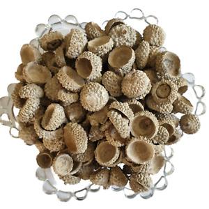 Acorn Caps - Pot Pourri - Decorative - 200g Bag - White Washed
