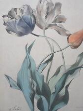 GRAVURE ORIGINALE  XIXéme TULIPES botanique fleurs Charles LABBE