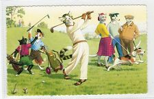 CATS PLAYING GOLF: USA postcard (C3803).