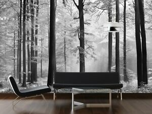 Wall mural photo wallpaper Black & white forest scenery tree   glue not included