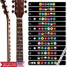 Neewer Guitar Fretboard Note Decals Fingerboard Frets Map Sticker