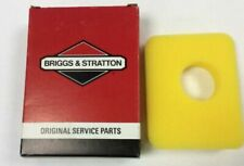 Briggs & Stratton 500E