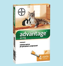 ADVANTAGE SPOT ON BAYER 4 PIPETTE PER GATTI FINO A 4 KG.