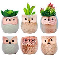 6 00004000  Pcs 2.5 Inches Ceramic Owl Succulent Pots Planters with Drainage Holes