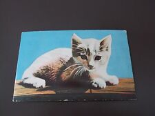 Vintage Cat Post Card with Squeeker, Printed in Japan
