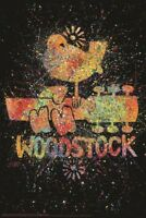RIP MUSIC M818 24x36 ART COLLAGE POSTER ROCK IN PEACE