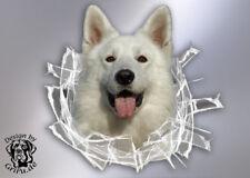 Aufkleber Weißer Schäferhund *im Glas-Loch* / 20x19cm / Konturenschnitt