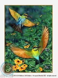 © ART - BIRD Rainbow Bee Eater Animal wildlife Original artist print by Di