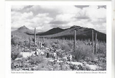 "*Postcard-""View From The Grounds"" - *Arizona-Sonora Desert Museum (#151)"