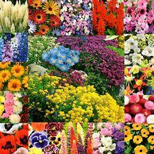 Steingarten Blumen Stauden Samen Beete Balkon Pflanzen Mischung 1-2-mehrjährig