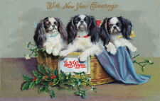 Antique New Year Art~Cavalier King Charles Spaniel Dogs in Basket~New Note Cards