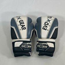 12Oz Evo Boxing Gloves