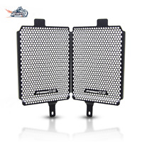 Motorcycle Radiator Grille Guard Cover For BMW R 1250 GS Exclusive TE 2019-UP