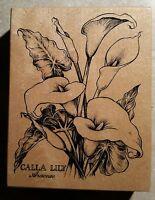 Rubber Stamp Calla Lilly Botanical Flower Floral Araceae PSX K1696