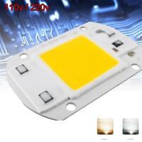 AC 220V 110V 50W 30W 20W LED COB Chip  No Need Driver Smart IC Bulb lamp BG