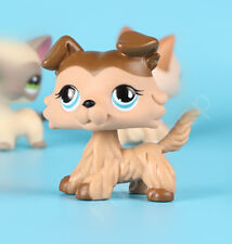 Littlest Pet Shop  Blue Eyes Animals Puppy Brown Ears Collie DogLPS Toys #58