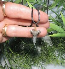 7/8'' Sharks Tooth Necklace/Jewelry/Megalodo n Fossil Sharks Teeth