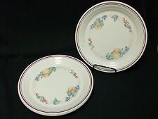 """CORELLE ABUNDANCE SET OF 7 LUNCH/LUNCHEON 8 1/4"""" PLATES FREE SHIPPING"""