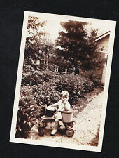 Antique Vintage Photograph Adorable Baby in Old Time Bike / Walker in Backyard