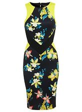 BNWT Celeb Bodycon Tropical Floral Pencil Party Panel Midi Dress Cut out 12 Sexy