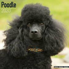 Poodle Calendar 2020 Premium Dog Breed Calendars
