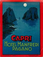 Hotel Manfredi Pagano ~CAPRI ITALY~ Beautiful Old RICHTER Luggage label, 1940