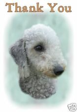 Bedlington Terrier Thank You Card By Starprint