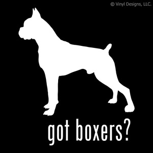 GOT BOXERS? BOXER DOG DECAL - DOGS STICKER
