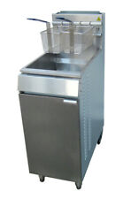 More details for commercial gas fryer floor standing single tank twin baskets chips chicken