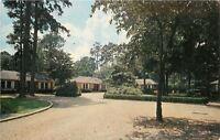 Thomasville Georgia~Woodland in the Pines~Motel Motor Court~1959