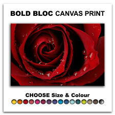 Roses Love Flowers FLORAL  Canvas Art Print Box Framed Picture Wall Hanging BBD