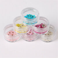 20pcs Natural Dried Spiraea Flower 3D Nail Art Set Wheel Acrylic UV Gel Tips
