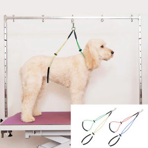 Dog Grooming NO SIT LIE DOWN RESTRAINT HARNESS SYSTEM Nylon for Table Arm Bath