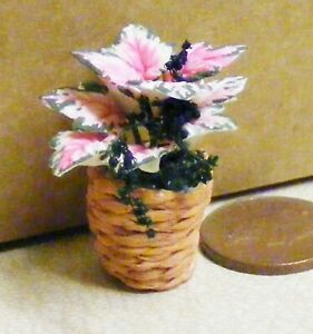 Pink & White Poinsettia Flowers In A Basket Pot Tumdee 1:12 Scale Dolls House 80